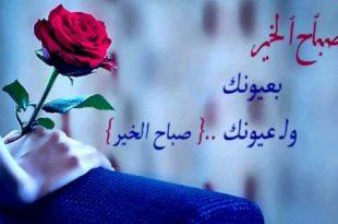 بالصور صباح حبيبي , مسجات للصباح للحبيب 5908 9 310x205