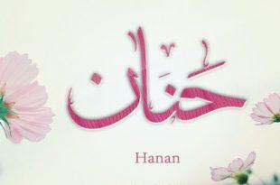 صور معنى اسم حنان , ارق الاسامى واروعها