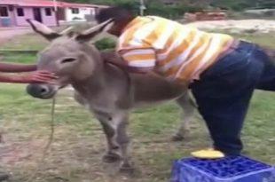 صورة فيديو مضحك جدا , من اجمل مقاطع الفيديو