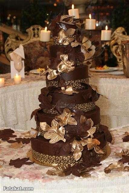 بالصور اجمل تورته فى العالم , عشاق الحلويات اجمل التورت فى العالم 3302 15