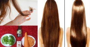 بالصور علاج تقصف الشعر , وصفات رهيبة لعلاج تقصف الشعر 3331 3 310x165