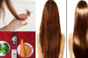 بالصور علاج تقصف الشعر , وصفات رهيبة لعلاج تقصف الشعر 3331 3 310x205