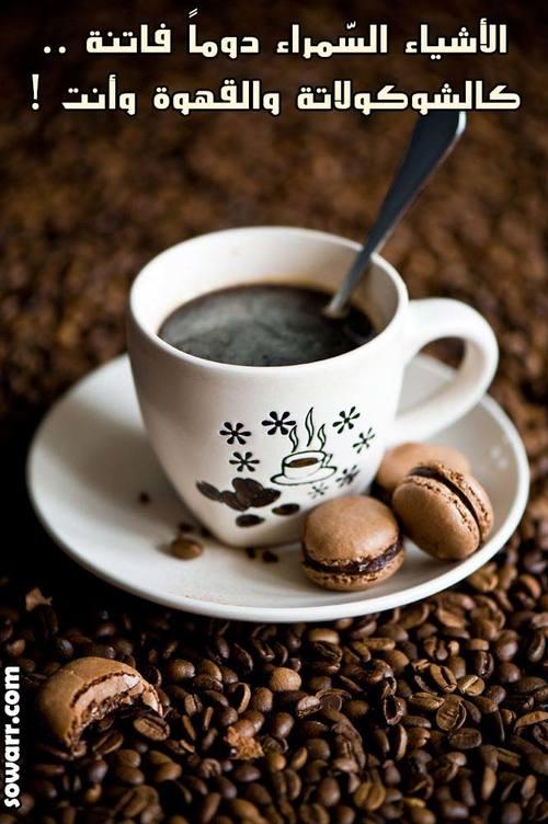 بالصور صور عن القهوة , صباحك جميل بالقهوة . 6289 2