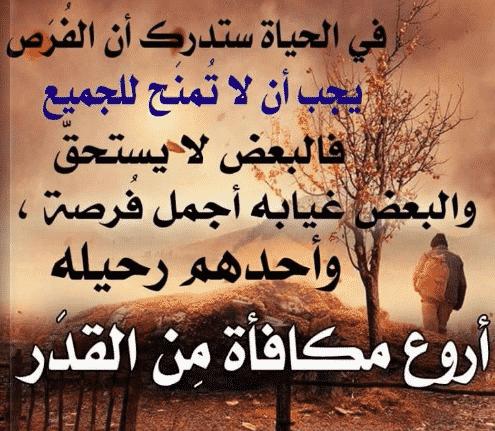 بالصور حكمة الحياة , حكم نتعلمها من الدنيا 1133