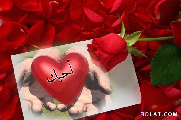 صور صور كلمة احبك , الرومانسية في صور وجمل وعبارات رائعة