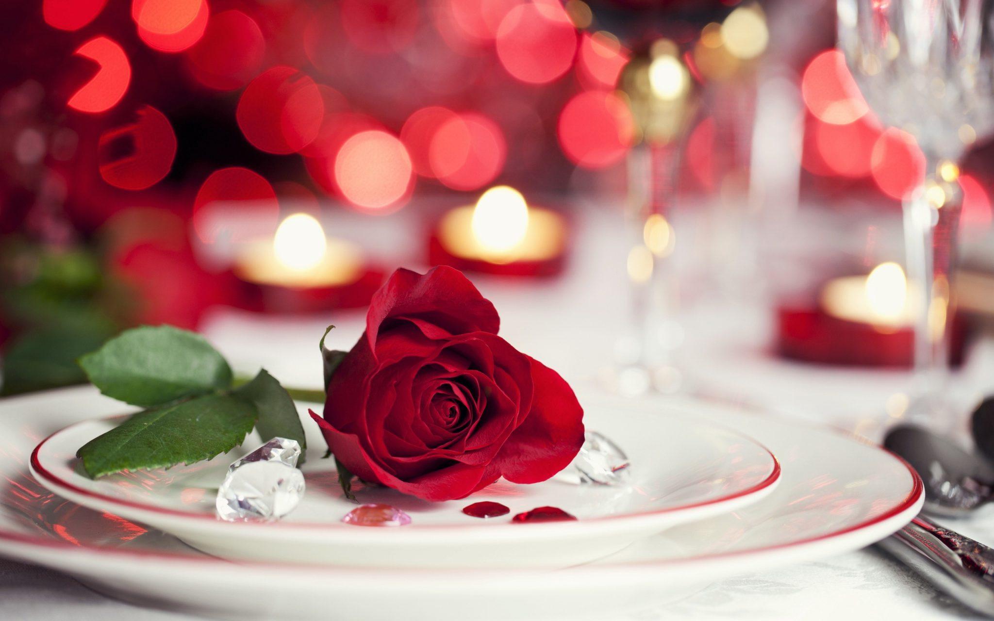 بالصور صور ورد حلوه , احلى الورود واجملها بكل الالوان والاصناف 972 11