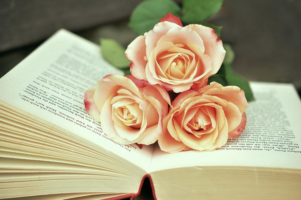 بالصور صور ورد حلوه , احلى الورود واجملها بكل الالوان والاصناف 972