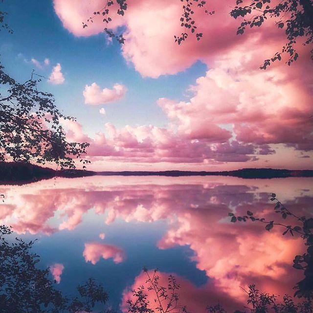 صور صور طبيعية , اجمل ما في الطبيعة صور الاشجار الجميلة
