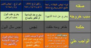 صورة ماهو المذي , معلومات اسلامية عن المذي وحكم التطهر منه