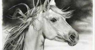 بالصور اجمل رسومات , لكل واحد عاشق للفن 1355 11 310x165