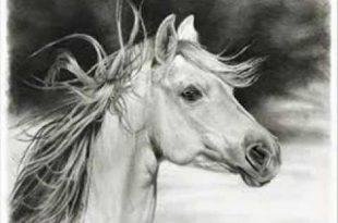 بالصور اجمل رسومات , لكل واحد عاشق للفن 1355 11 310x205