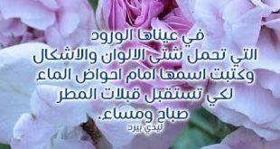 بالصور كلمات من ورود , عبارات فواحة تفوح باحلي كلام علي زهورر 1357 12 310x165