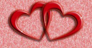 بالصور صور قلب حب , خلفيات لكل عاشق ومحب 1358 12 310x165