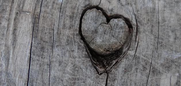 بالصور اجمل ماقيل في الحب , كلمات رومانسية بين العشاق 3619 2