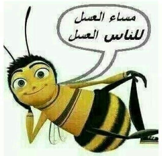 صورة مساء العسل , كلمة مساء العسل بالصور زي العسل 62 9