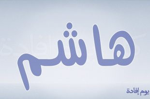 بالصور معنى اسم هاشم , تعرف على هاشم معناه وصفاته 6268 1 310x205