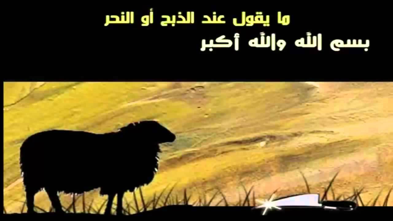 صورة دعاء ذبح اضحية العيد , مراحل ذبح اضاحى العيد
