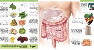 سلامة الجهاز الهضمي , كيفيه الحفاظ على الجهاز الهضمى