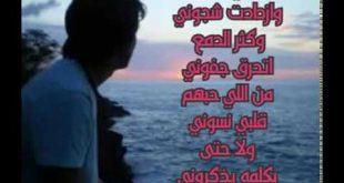 بالصور ضناني الشوق كلمات , اغنية ضناني الشوق كلمات لمحمد عبده 3582 3 310x165