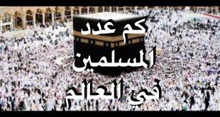 صور كم عدد المسلمين في العالم , تعرف على نسبة المسلمين بالعالم