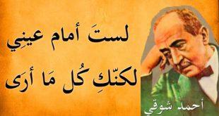صور شعر احمد شوقي , من هو الشاعر احمد شوقي