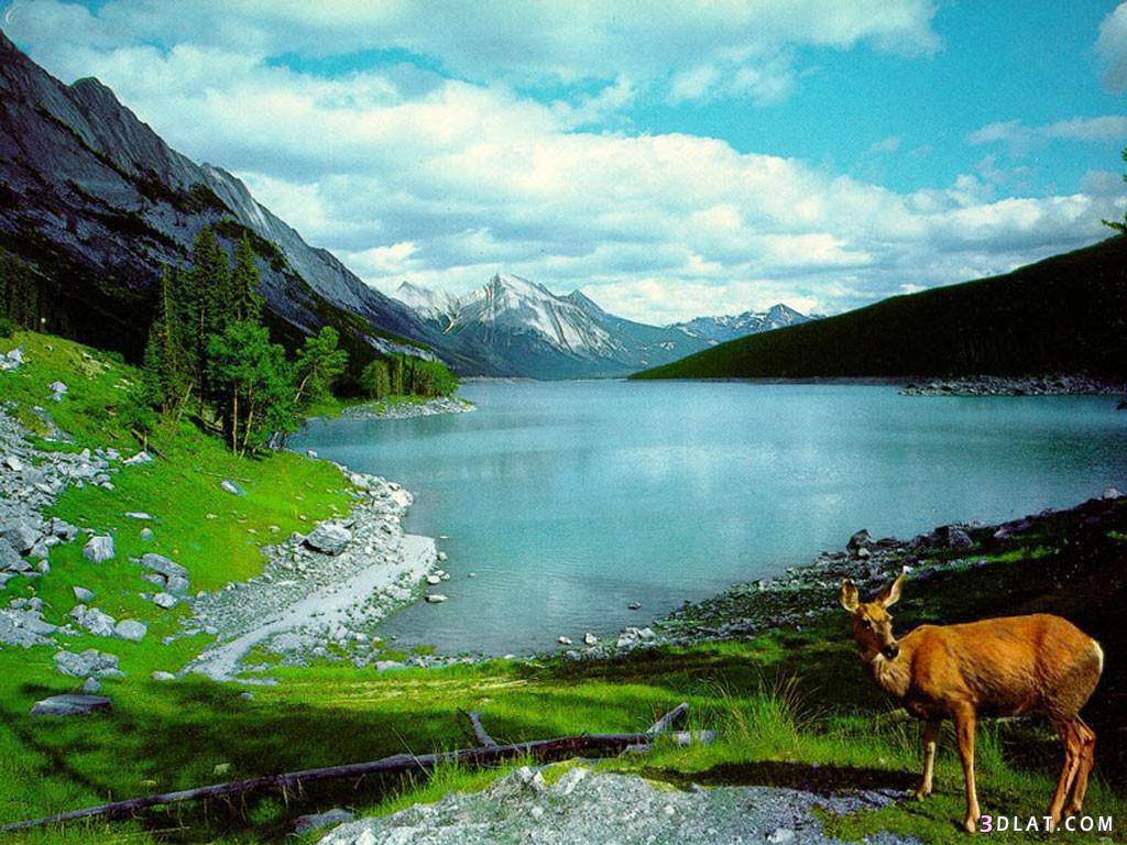 صور صور طبيعة رائعة , اجمل صور طبيعية في الحياة