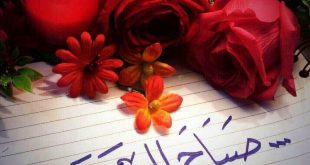 صورة صور صباح الورد , اروع كلمة صباح الخير على الورد
