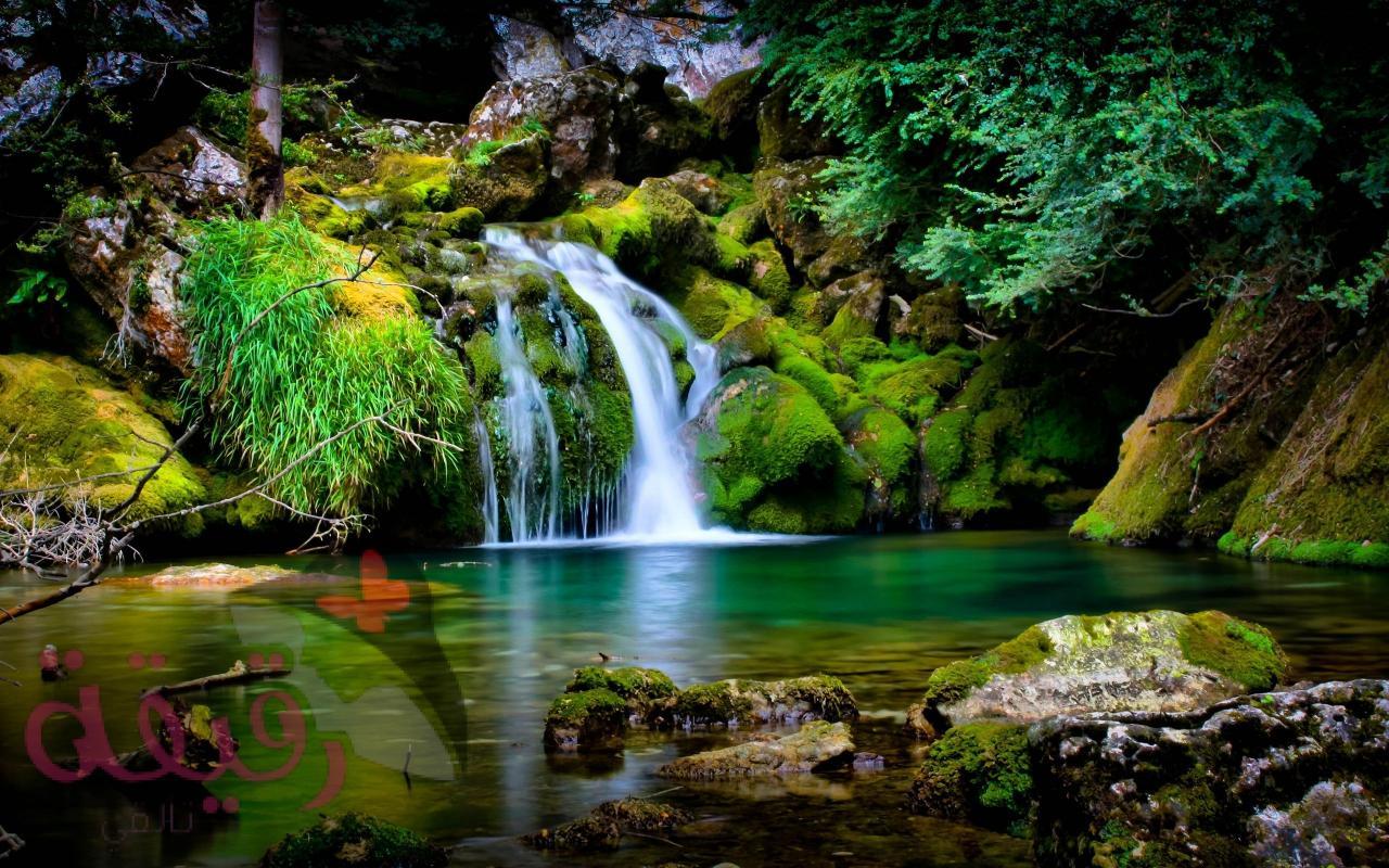 صورة صور طبيعة خلابة , شاهد اجمل و الروع الصور الطبيعية في غاية الجمال