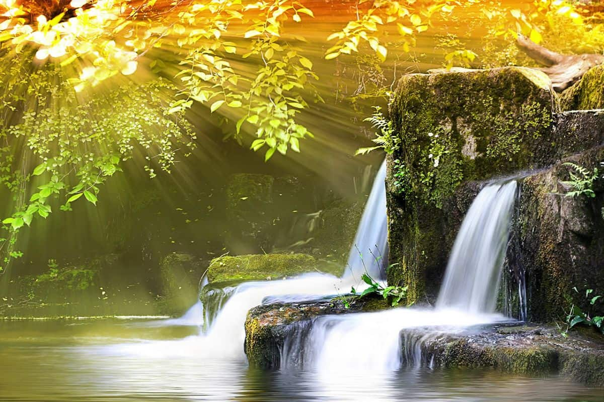 صورة بحث عن الموارد الطبيعية , ماهى الموارد الطبيعية