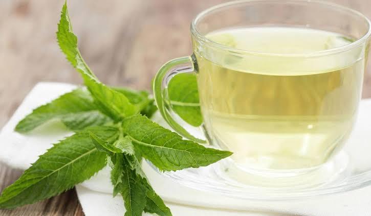 صورة التهابات الجيوب الانفية وعلاجها بالاعشاب , فوائد الاعشاب في علاج الجيوب الانفية