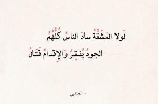 صورة اجمل اشعار المتنبي , اجمل الاشعار للشاعر العظيم المتنبى 13083 3 310x205