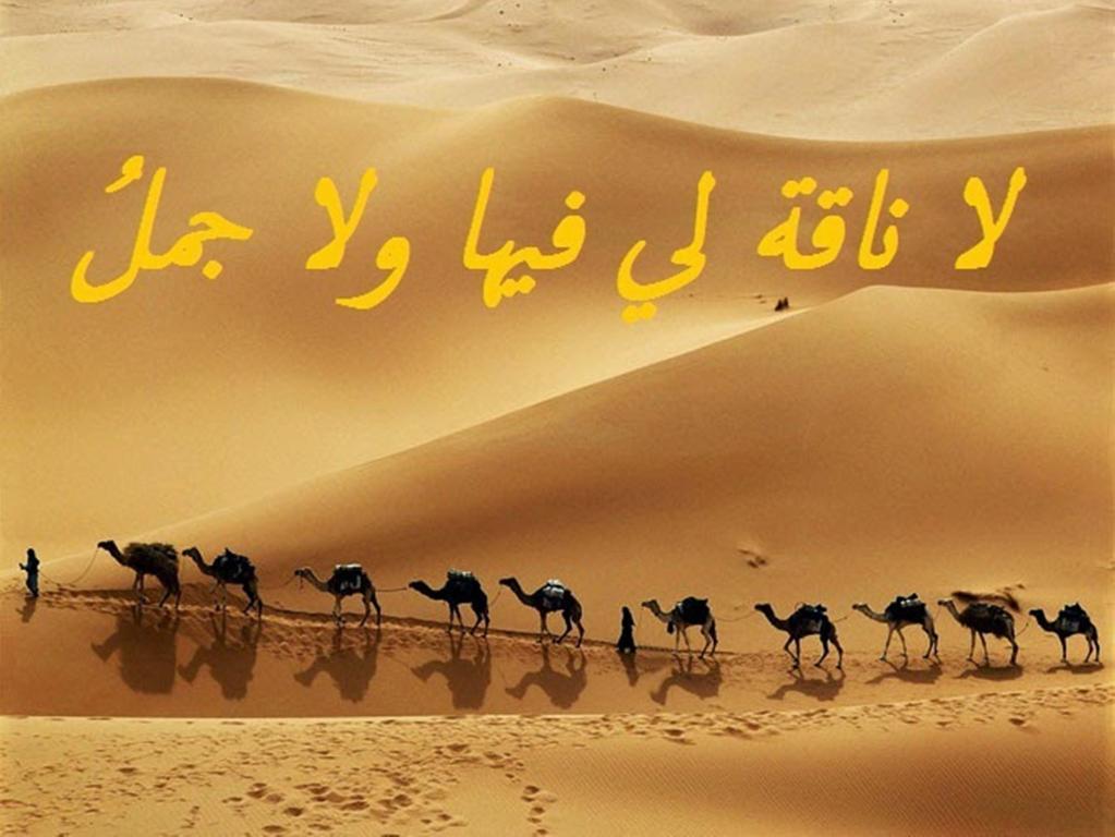 صورة امثال ليبيه صايعه , أكثر الامثال الشهيره ف لبيا 13484